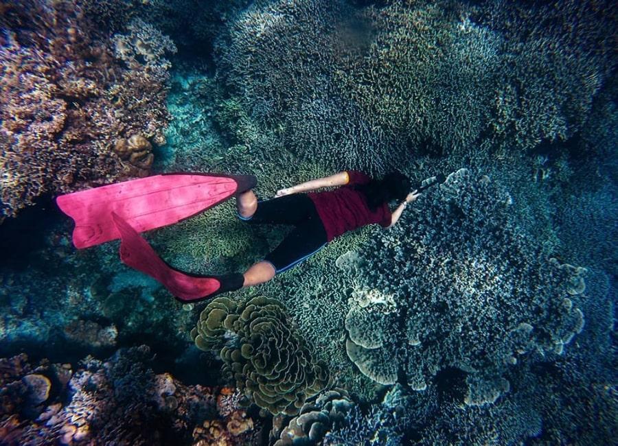 bawah laut pulau pari