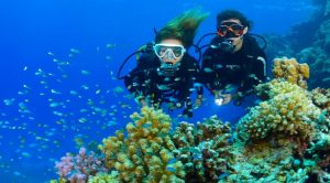 diving pulau putri