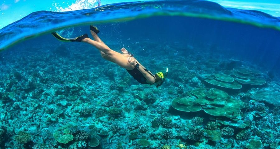 diving di Pulau Seribu