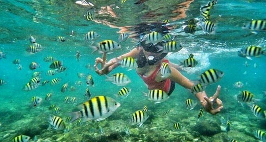 Budget liburan ke Pulau Pari