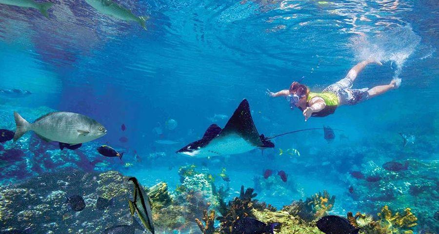 keunikan Kepulauan Seribu