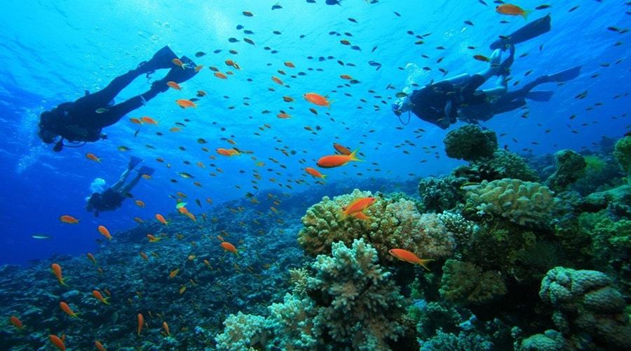 pulau cantik di Kepulauan Seribu