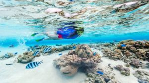 snorkling pulau macan