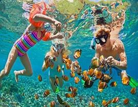snorkling pulau pantara