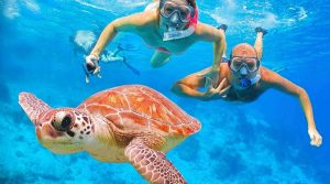 snorkling pulau sepa